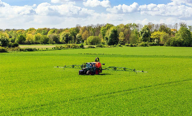 BAYER et le « cancer » du Glyphosate